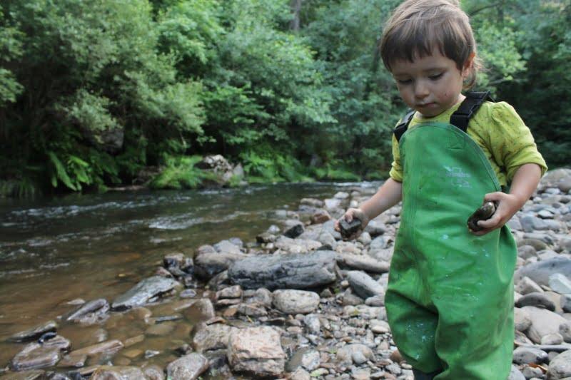 ¡Estrenamos también el Blog de Amphibia Kids!