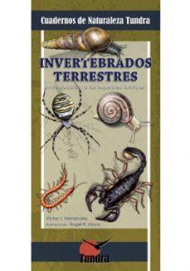 Cuaderno de Naturaleza: Invertebrados Terrestres