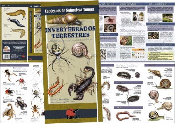 Cuadernos de Naturaleza. Invertebrados. Desplegado
