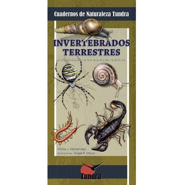 Guía invertebrados Tundra