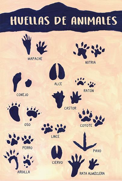 Guía campo niños