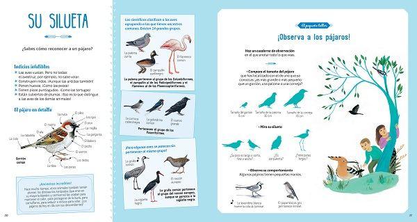 El libro de los pájaros infantil