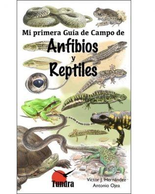Mi primera Guía de Campo de Anfibios y Reptiles  – Víctor J. Hernández y Antonio Ojea