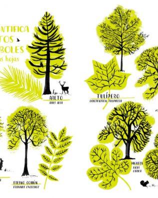 Hola Natura – Libro de actividades