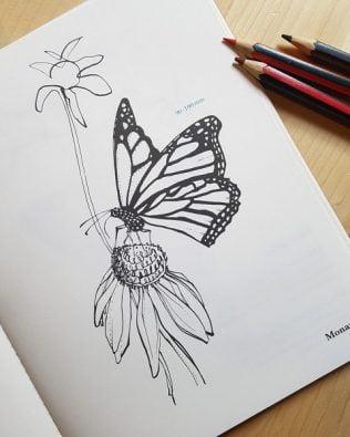 Cuaderno para colorear – Suspirium