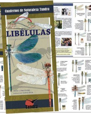 Cuadernos de Naturaleza: Libélulas. Introducción a las especies ibéricas