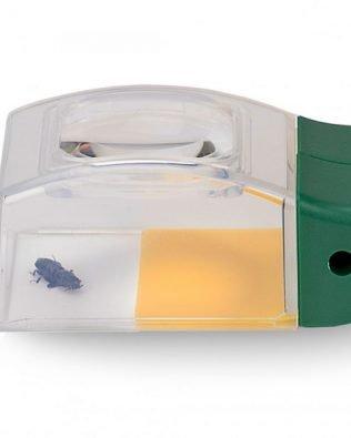 Atrapa insectos con lupa – BUGVIEW™ – Carson®