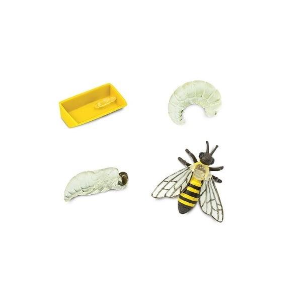 Ciclo vida abeja figuras miniatura