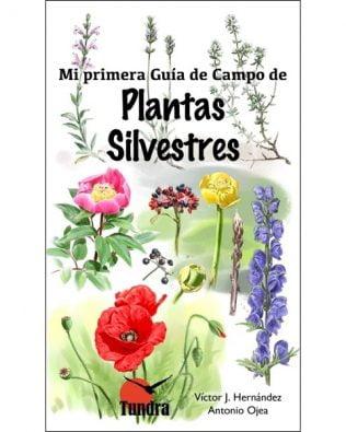 Guía plantas niños