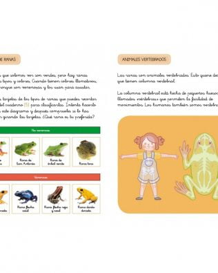 Descubre la Naturaleza con Montessori. Cuentos y actividades sobre los animales