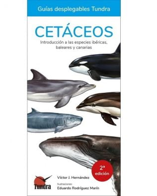 Guía desplegable: Cetáceos. Introducción a las especies ibéricas y Canarias