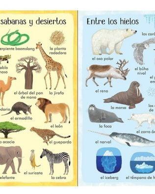 199 cosas que hay en la naturaleza. Usborne