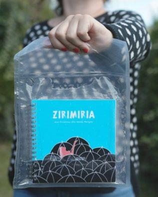 Zirimiria. 41 experimentos para disfrutar bajo el zirimiri y otras lluvias (eus/cast)
