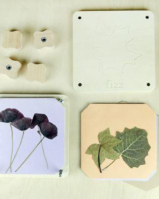 Prensa y Herbario – Fizz