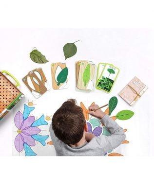 Botánica creativa –  Miniland