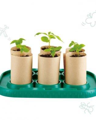 Invernadero de cultivo para semillas – Hape